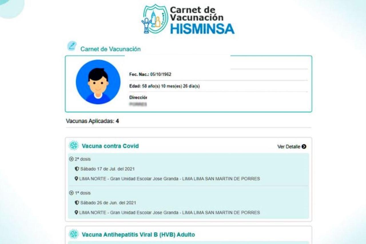 Así aparecerá tu carné de vacunación digital (Foto: Andina)